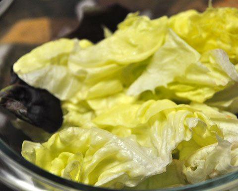 Lettuce for salad