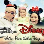 Disney: Which Park Which Day