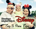 Disney Tips Series